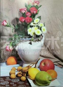 【素描教程】花卉静物素描步骤详解