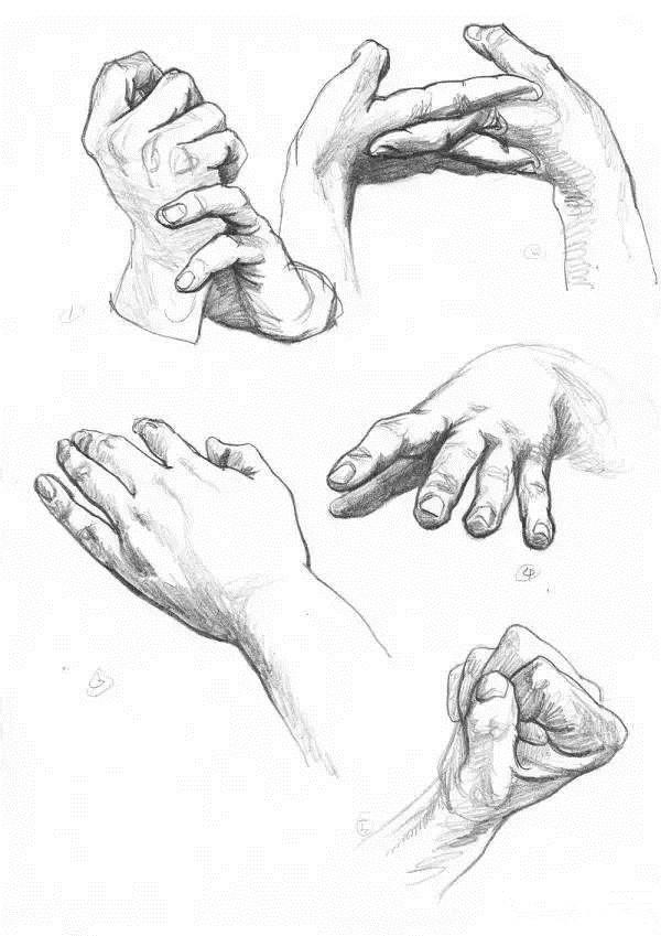 简笔画 手绘 素描 线稿 600_849 竖版 竖屏