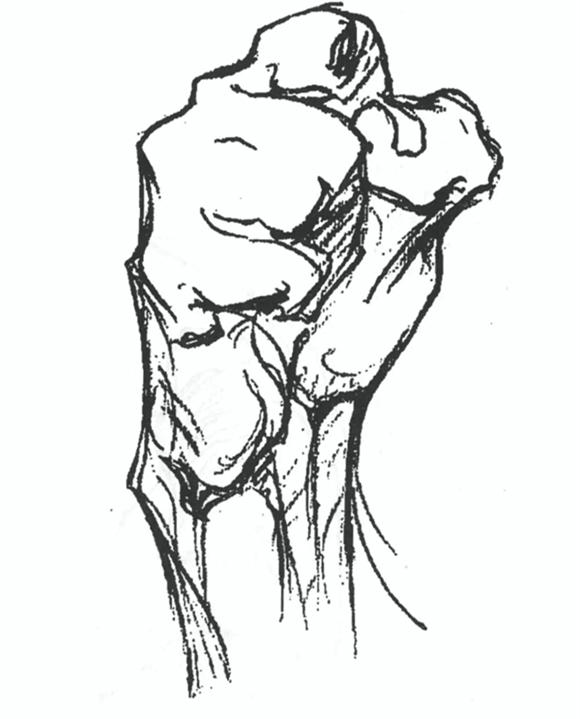 速写超难点!手的内部结构解析