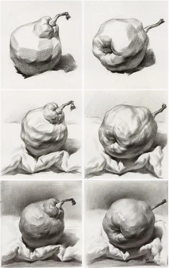 首页 素描教学 正文  步骤四:用纸巾顺着梨的结构,形体,虚实变化去揉