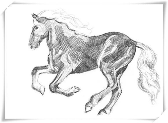 动物精灵简笔画高光网