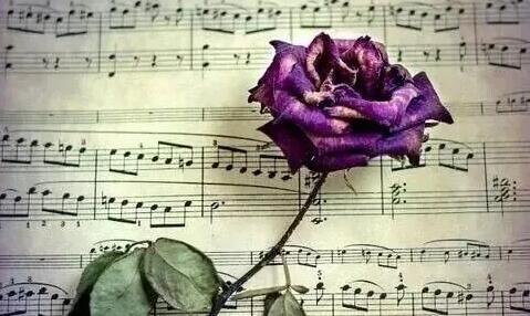 太原學聲樂比較好的機構是哪家_聲樂課程_價格_報名:學音樂,怎能忽視視唱練耳?